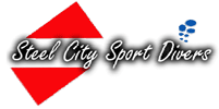 Steel city Logo